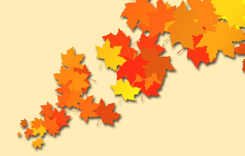Photo wallpaper autumn, leaves, color, vector, maple
