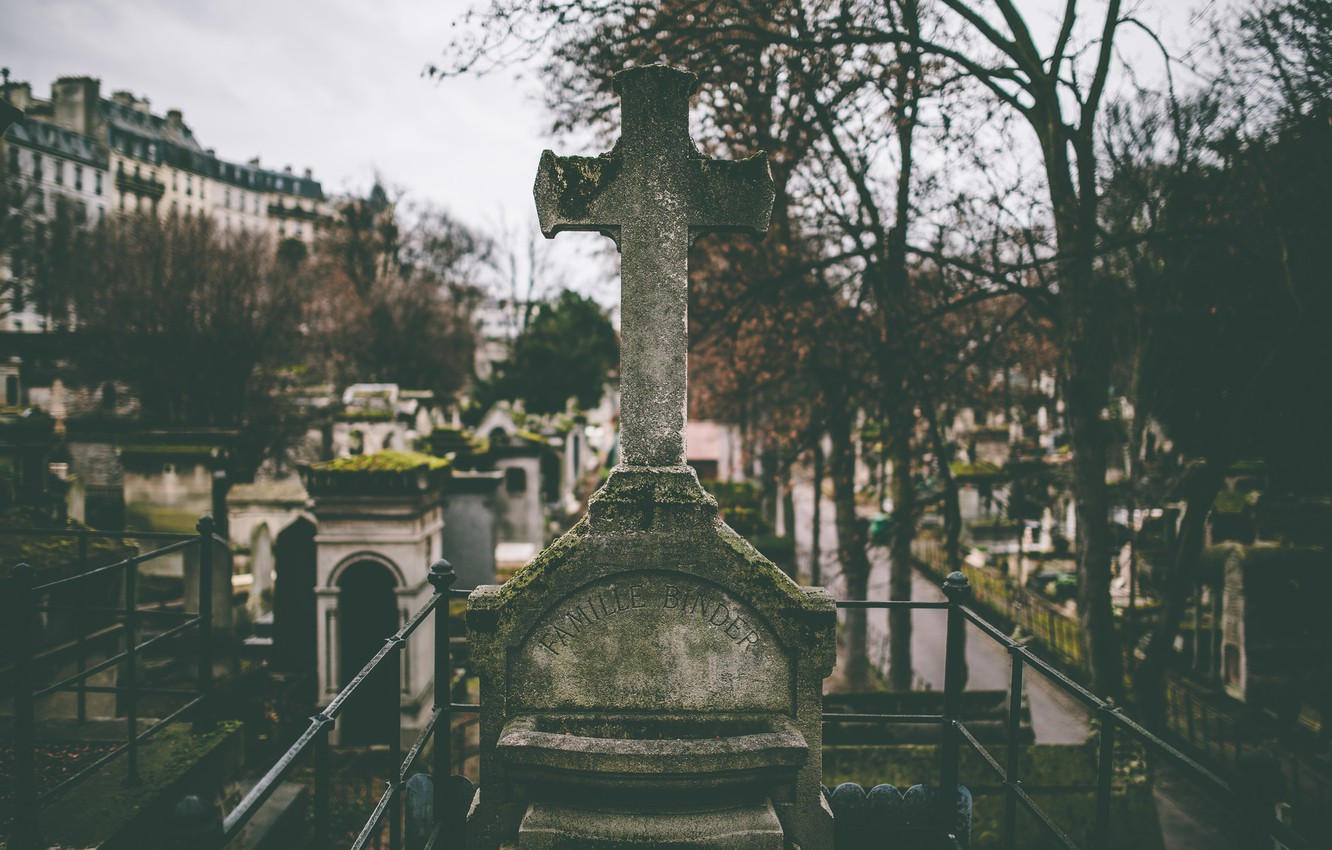Photo wallpaper trees, death, branch, graves, cross, cemetery, mucus