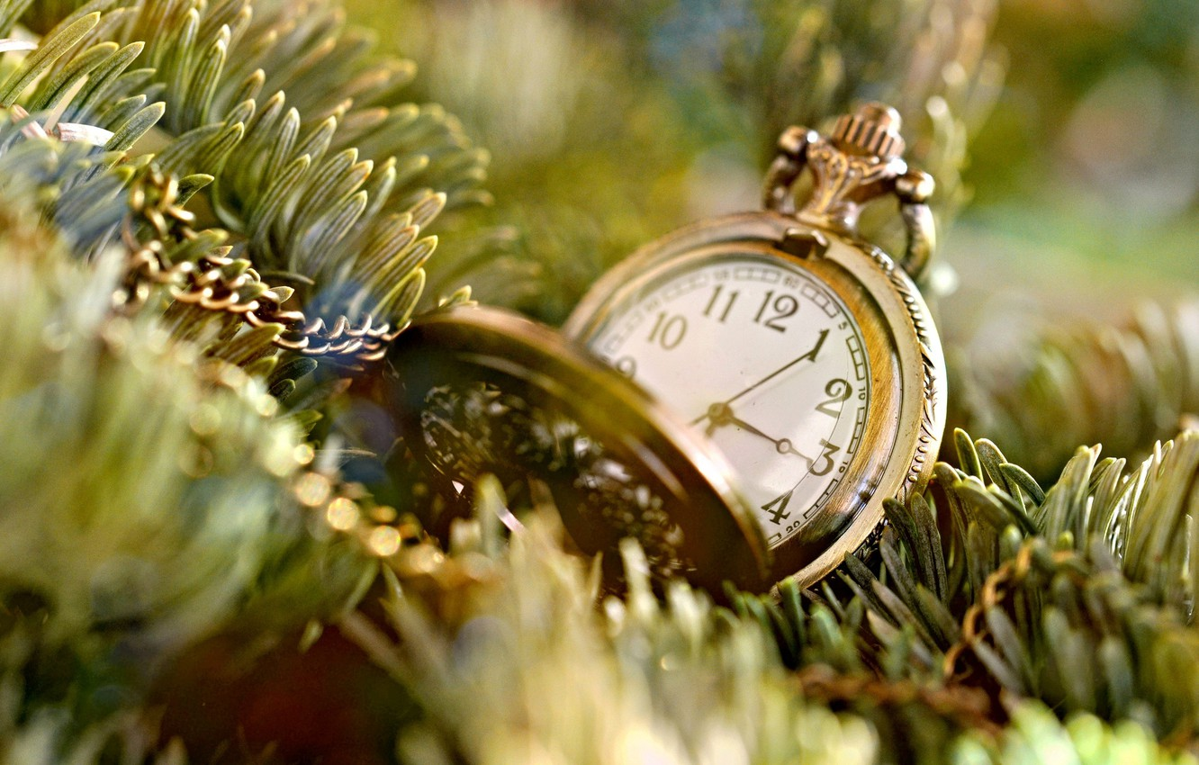 Photo wallpaper needles, time, background, tree, widescreen, Wallpaper, mood, watch, tree, chain, wallpaper, dial, chain, widescreen, background, …