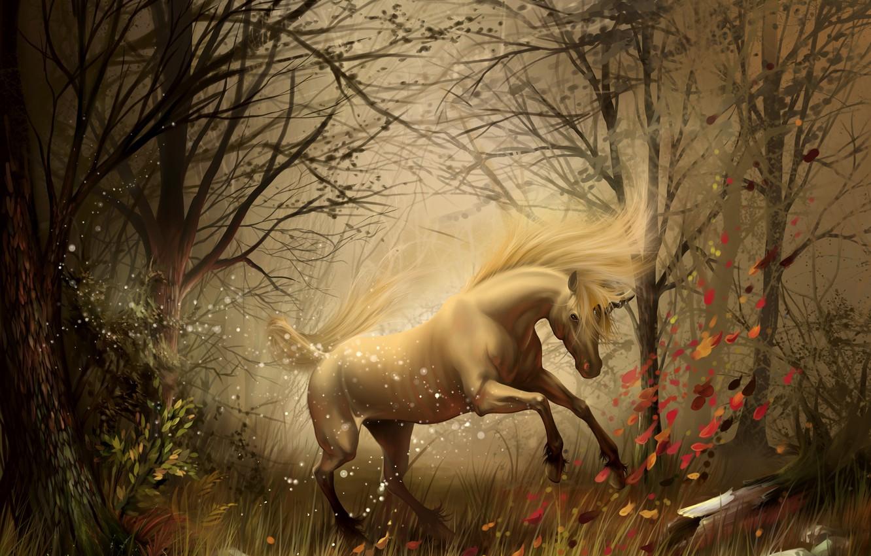 Photo wallpaper autumn, forest, unicorn