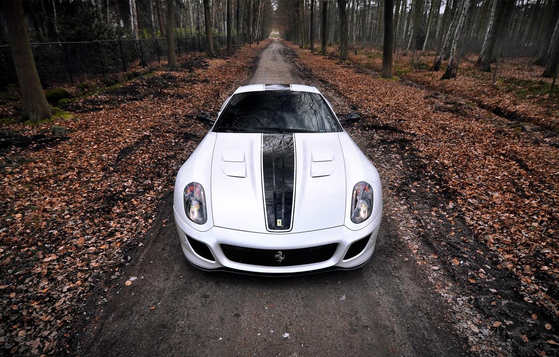 Photo wallpaper autumn, forest, leaves, one, Ferrari, Ferrari, supercar, 599, GTO
