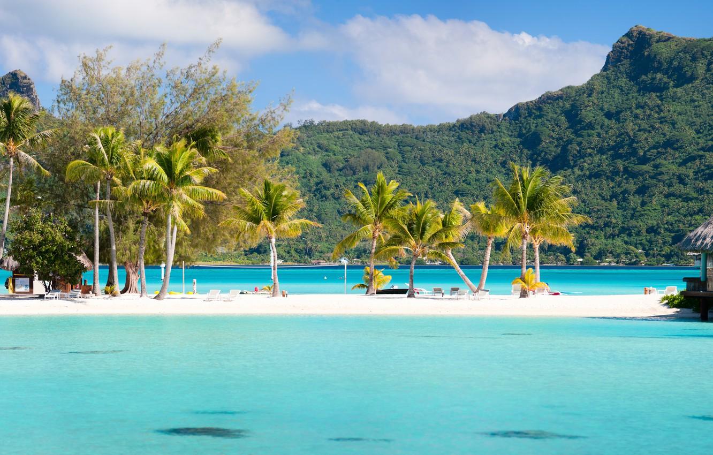Photo wallpaper sea, mountains, palm trees, exotic