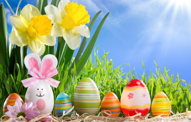 Wallpaper grass, the sun, flowers, eggs, spring, Easter, sunshine ...