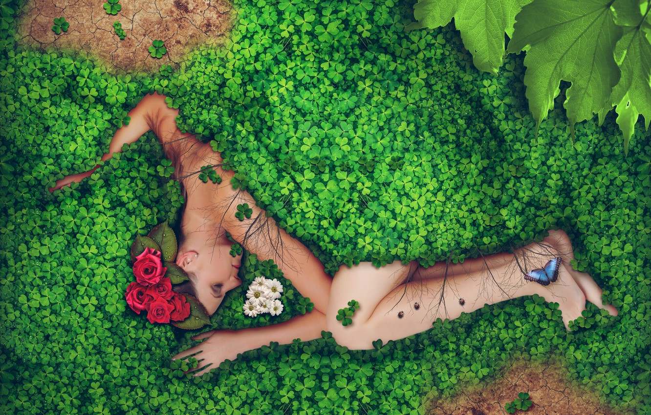 Photo wallpaper greens, leaves, girl, drops, flowers, Rosa, creative, butterfly, roses, lies, chrysanthemum, in the grass, ladybugs