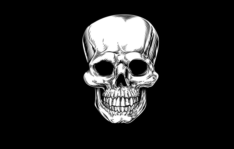 Photo wallpaper skull, minimalism, head, skeleton, sake, black background
