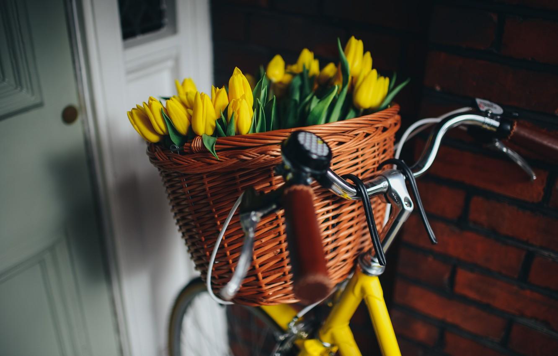 Photo wallpaper bike, basket, yellow, tulips