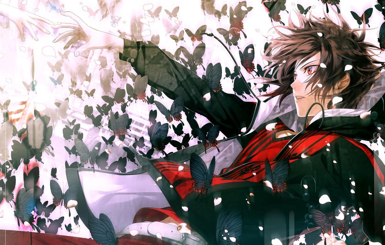 Photo wallpaper butterfly, hands, petals, drop, guy, Amnesia, Shin