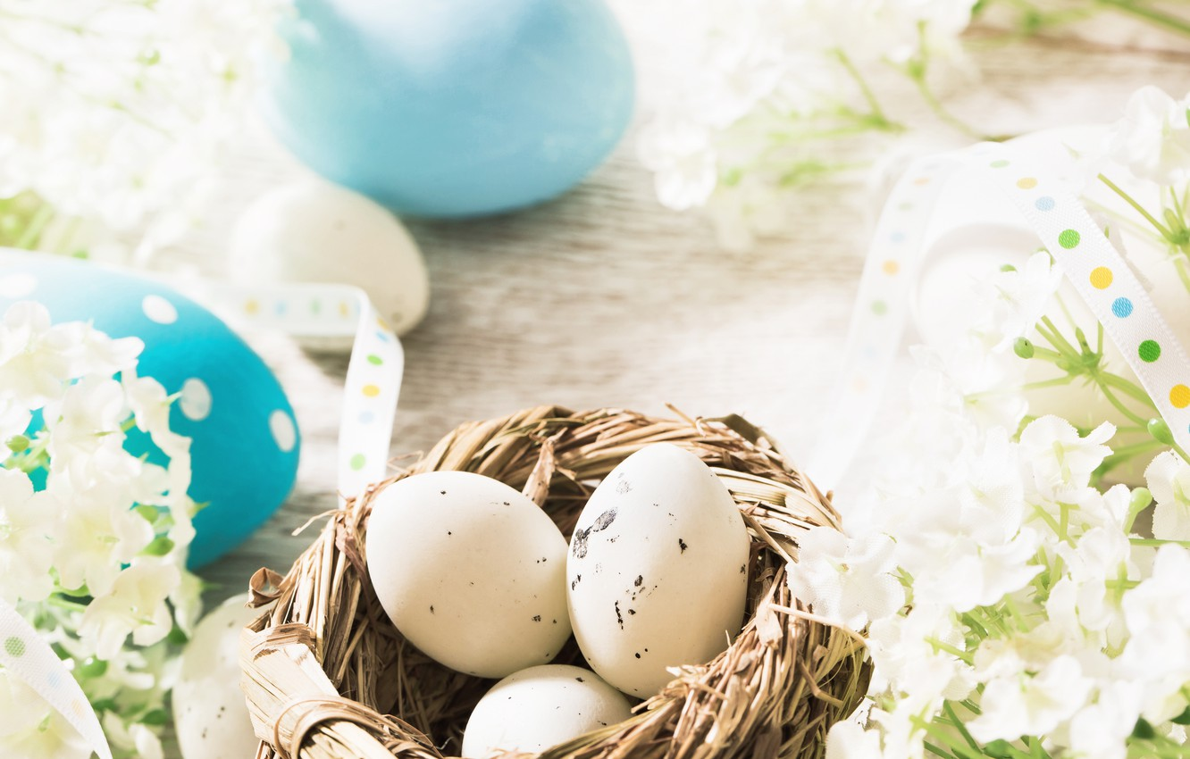 Photo wallpaper flowers, eggs, spring, Easter, flowers, spring, Easter, eggs, decoration, Happy