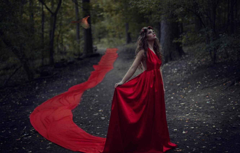 Photo wallpaper forest, girl, bird, red dress, Jesse Duke, Ailish
