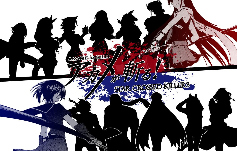 Photo wallpaper anime, Akame, Akame Ga Kill, ongoing2014.