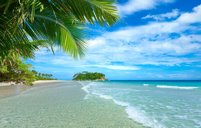 Photo wallpaper sand, sea, beach, summer, palm trees, summer, beach, sea, sand, paradise, vacation, palms, tropical