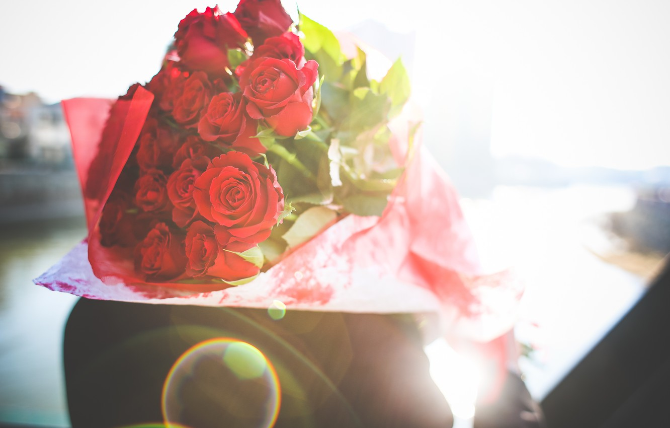 Photo wallpaper flowers, gift, roses, petals, red