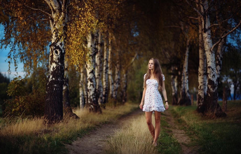 Photo wallpaper road, autumn, girl, birch