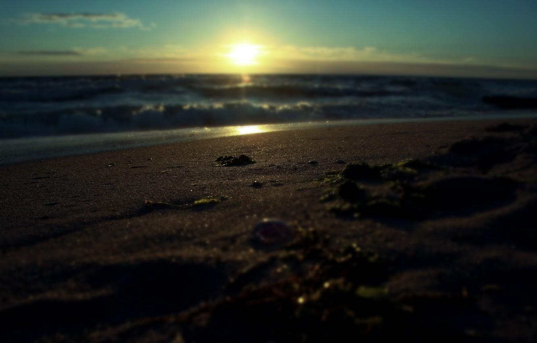 Photo wallpaper sand, sea, water, the sun, macro, rays, landscape, sunrise, surf, macro