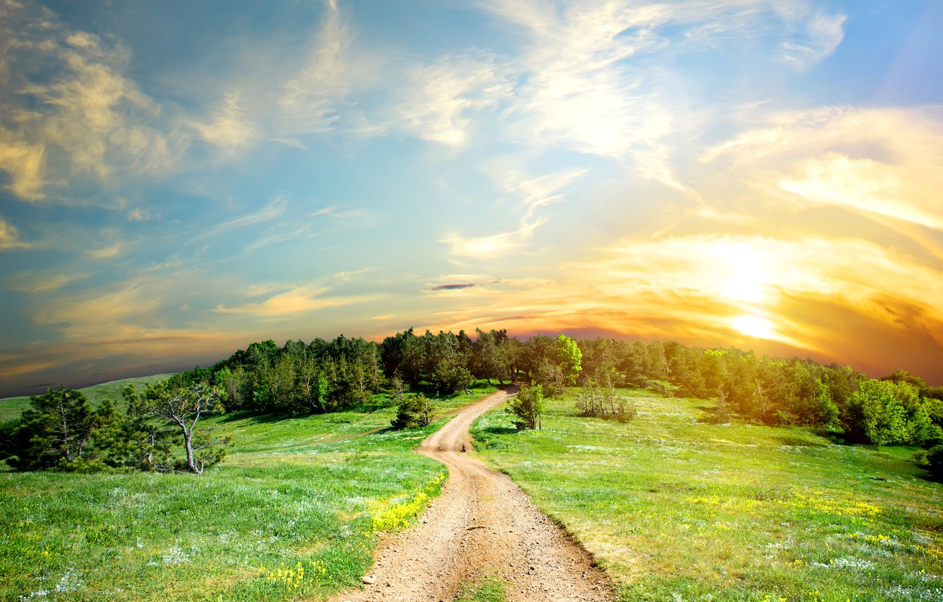 Photo wallpaper road, the sun, clouds, trees