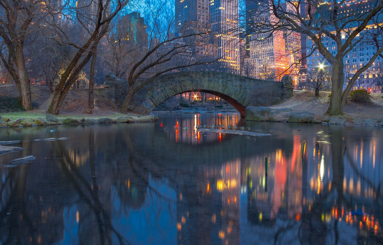 Photo wallpaper lights, New York, twilight, Central Park