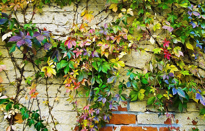 Photo wallpaper autumn, leaves, wall, paint, figure, color, ivy