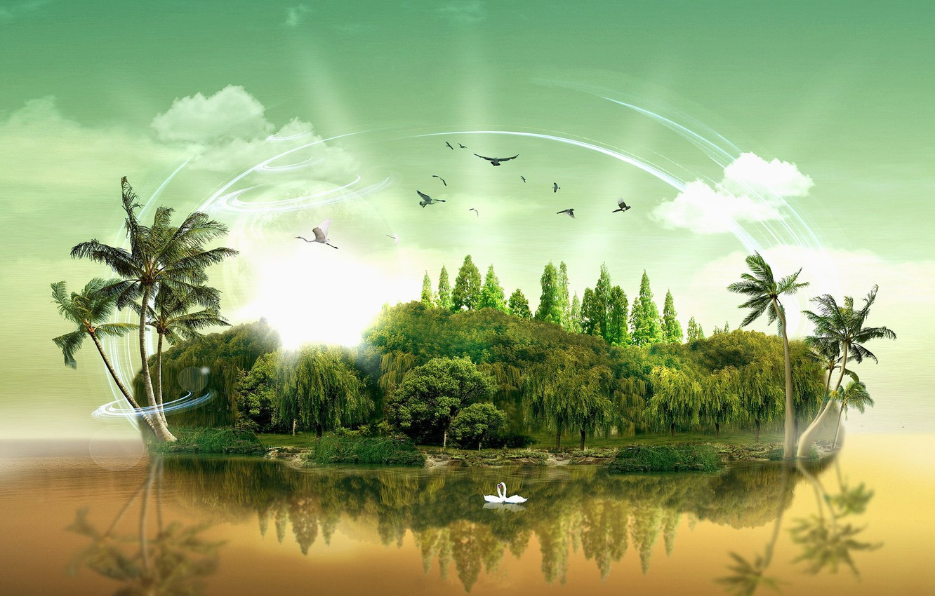Photo wallpaper water, clouds, trees, palm trees, island, birds swans