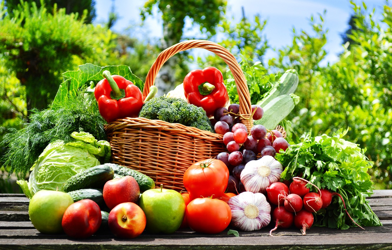 Photo wallpaper nature, basket, apples, grapes, pepper, fruit, vegetables, tomatoes, cabbage, cucumbers, garlic, radishes