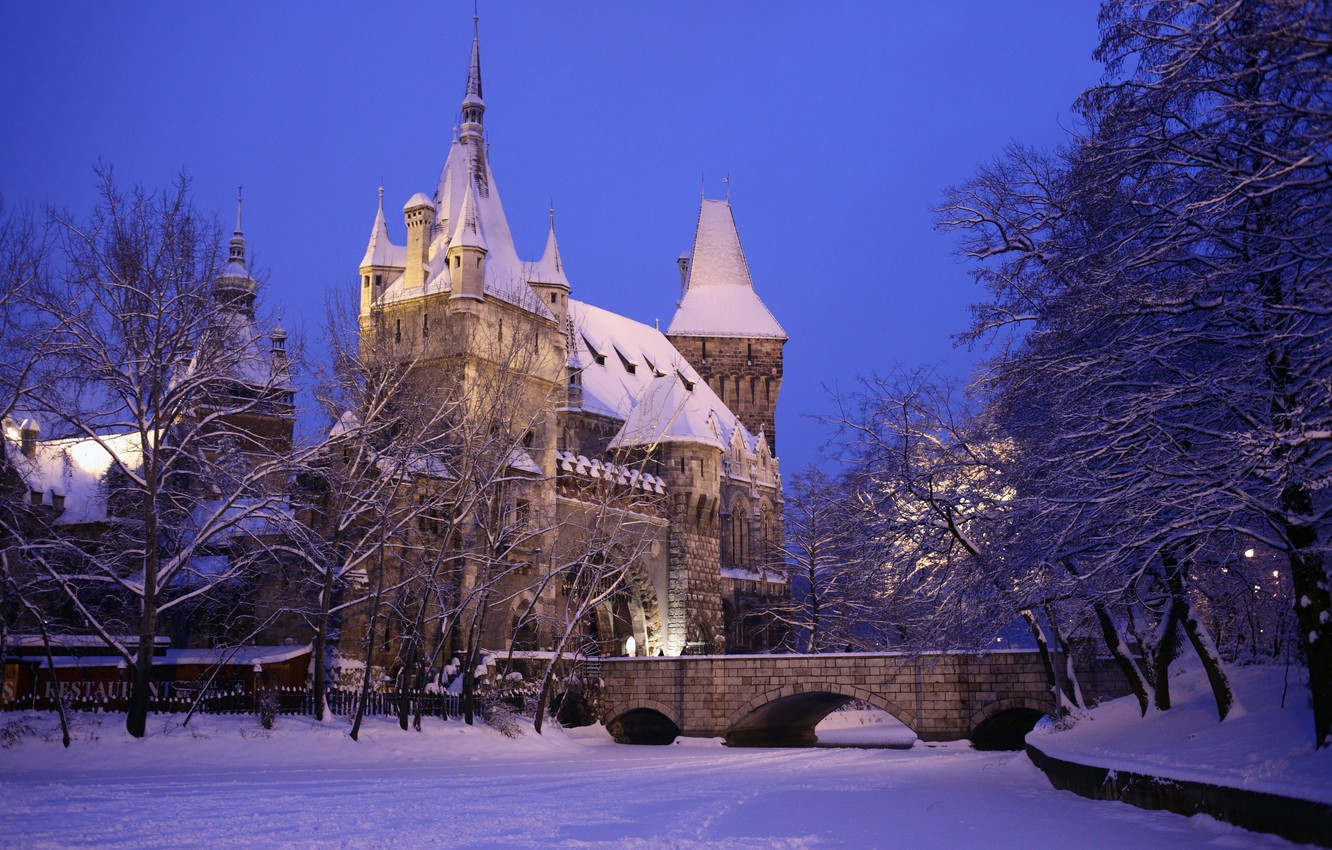 Photo wallpaper winter, snow, the city, photo, castle, Hungary, Budapest, Ter