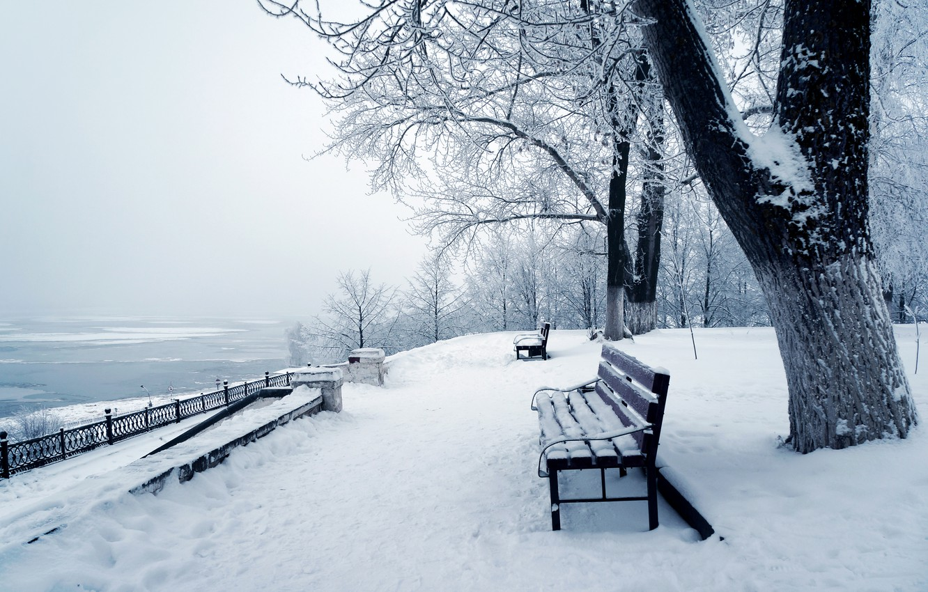 Photo wallpaper photo, Nature, Winter, Snow, Bench, The trunk of the tree