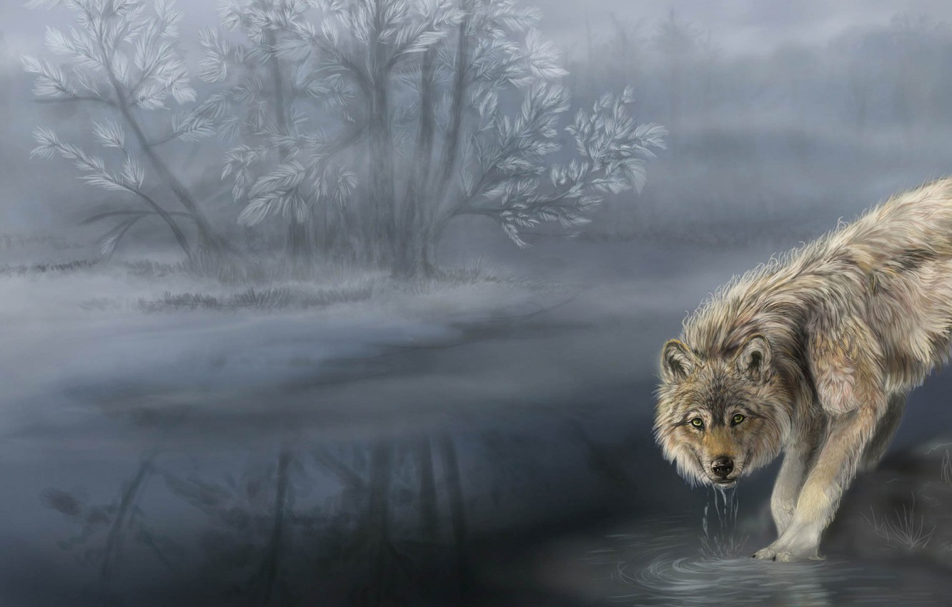 Photo wallpaper forest, water, nature, river, wolf, art