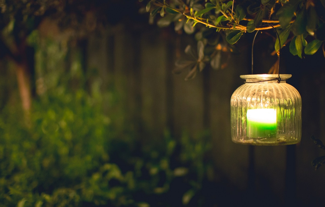 Photo wallpaper leaves, light, green, background, tree, widescreen, Wallpaper, mood, candle, blur, branch, lights, lantern, wallpaper, widescreen, …