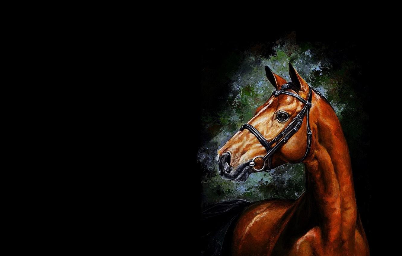 Photo wallpaper horse, horse, minimalism, art