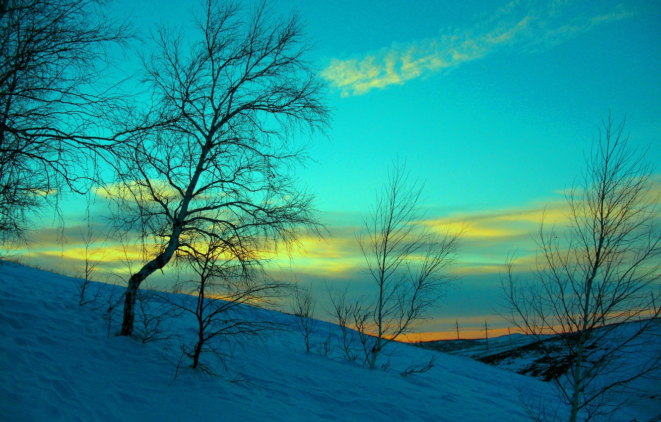 Photo wallpaper winter, the sky, snow, sunset, the evening