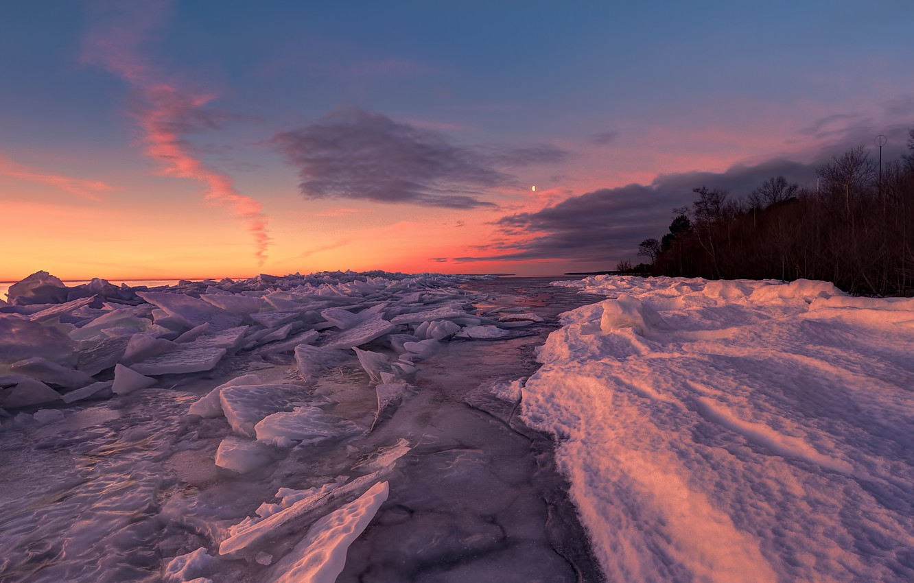 Photo wallpaper ice, forest, snow, nature, lake, dawn, shore
