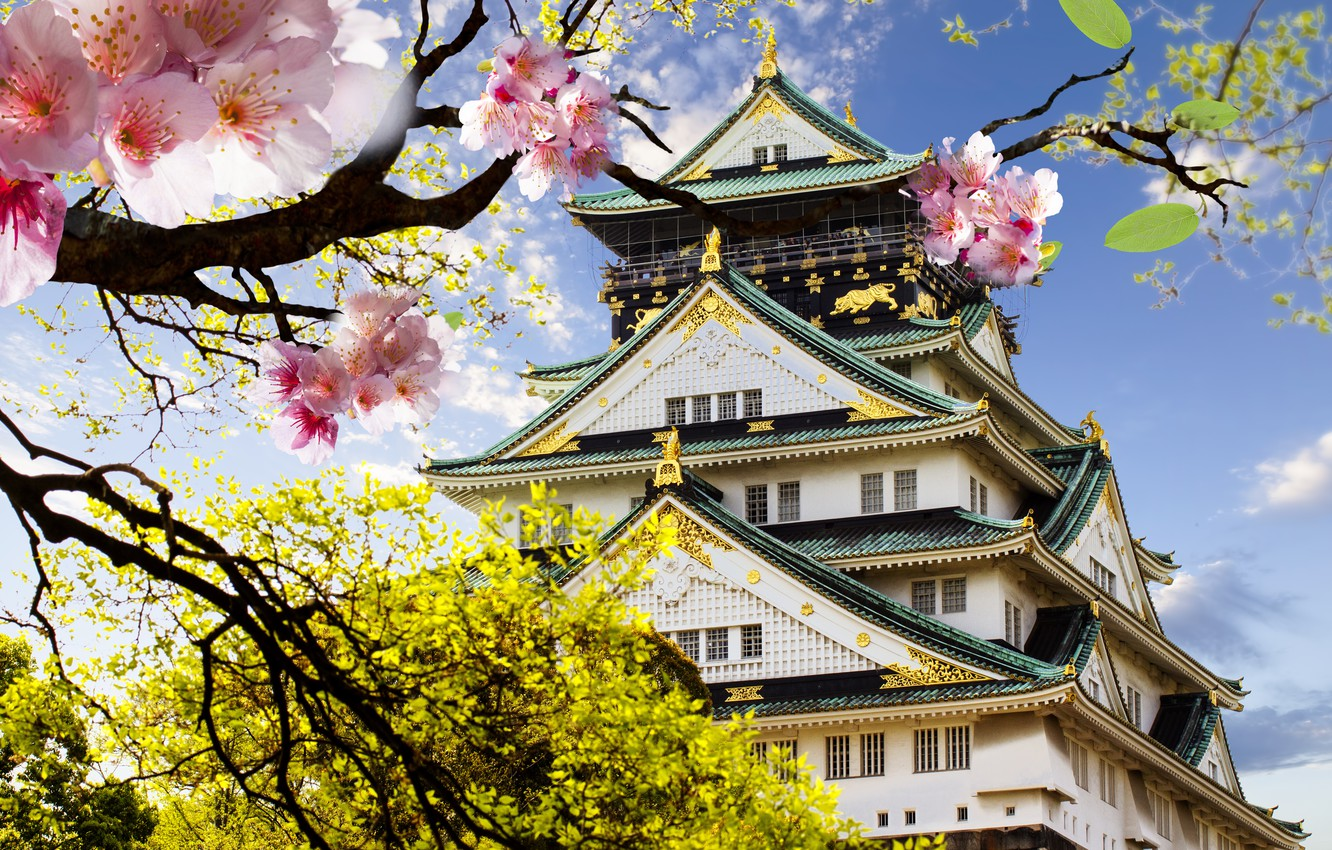 Photo wallpaper castle, Japan, Sakura, flowering, Japanese, castle, japanese