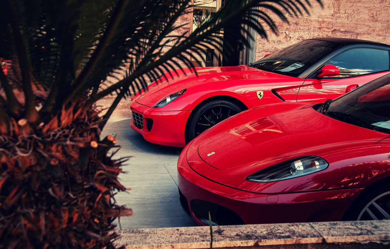 Photo wallpaper red, F430, Ferrari, red, Ferrari, 599, GTO, palm