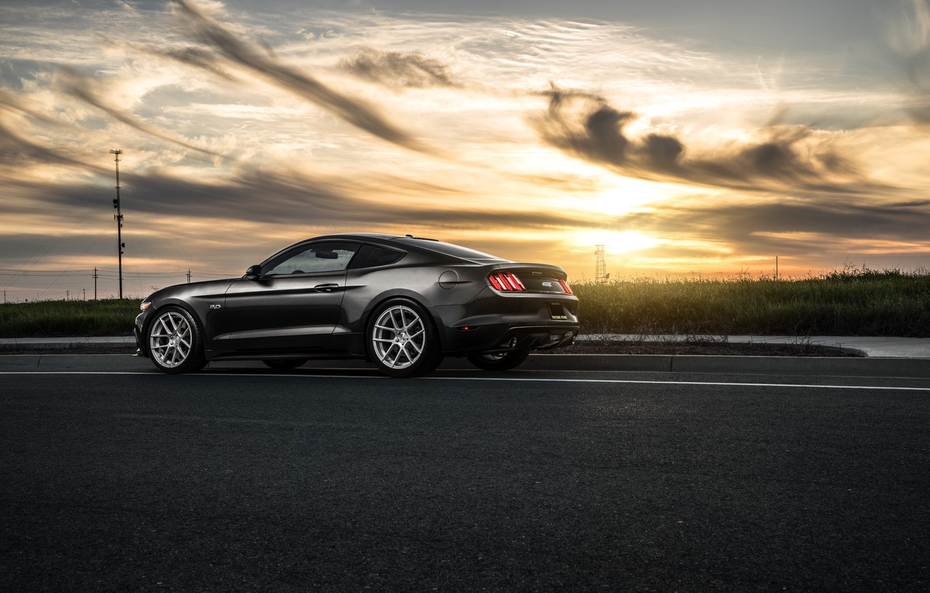 Photo wallpaper Mustang, Ford, Muscle, Car, Sunset, Wheels, Before, Rear, 2015, Garde
