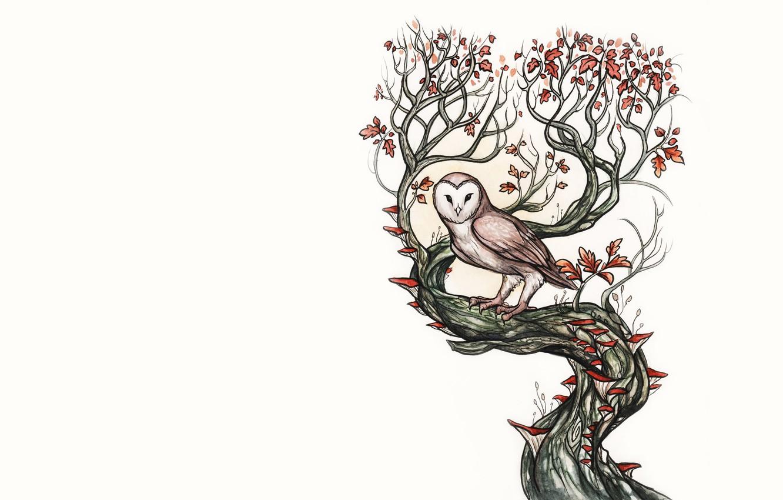 Photo wallpaper leaves, tree, owl, bird, owl