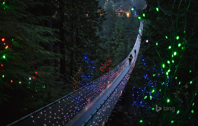 Photo wallpaper trees, lights, people, holiday, Canada, British Columbia, suspension bridge, North Vancouver, Capilano