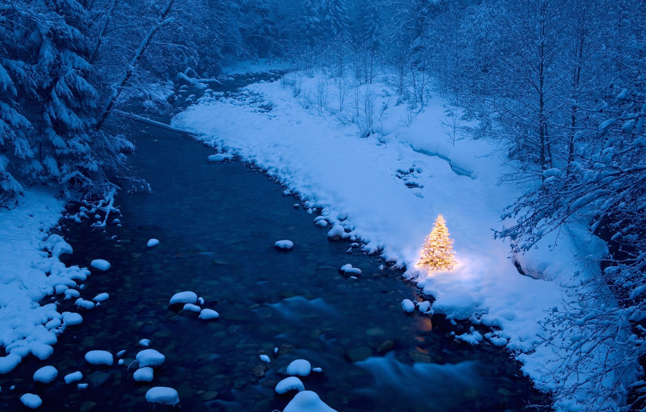 Photo wallpaper forest, river, winter, tree, garland, Christmas