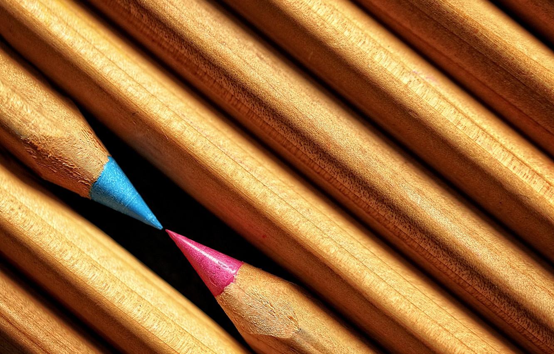 Photo wallpaper macro, background, pencils
