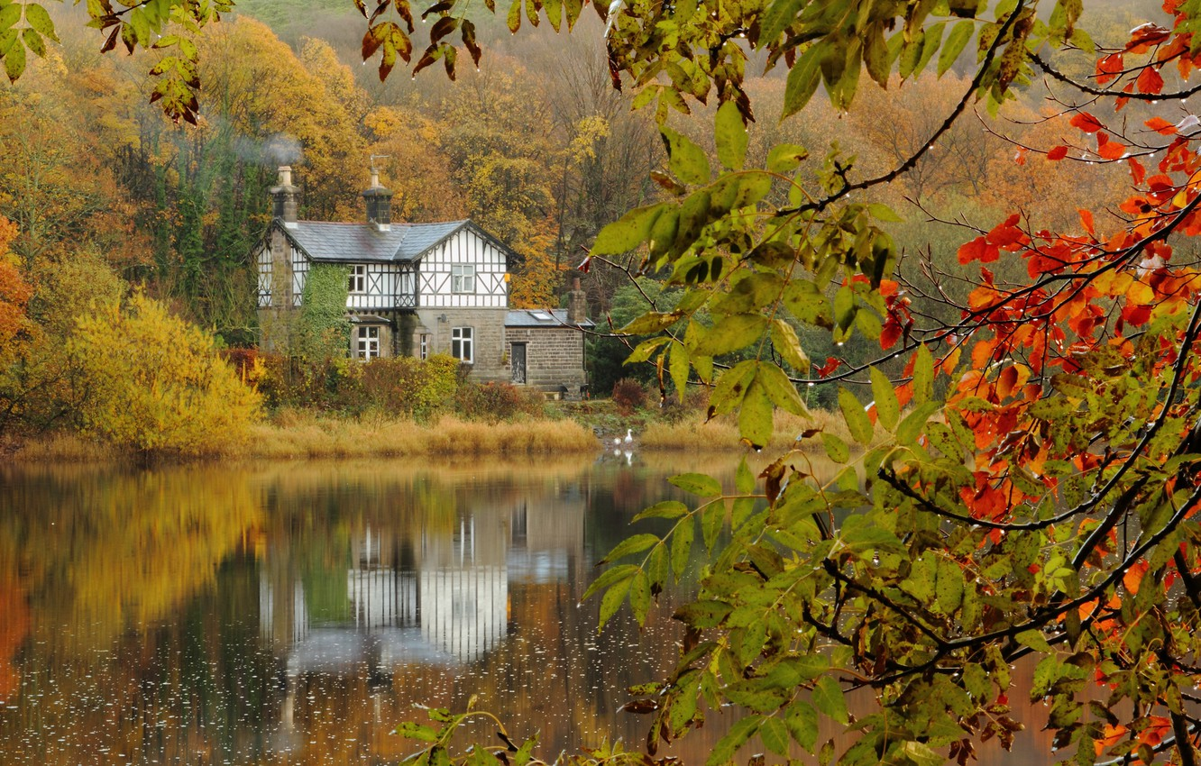 Photo wallpaper autumn, forest, branches, lake, house, after the rain