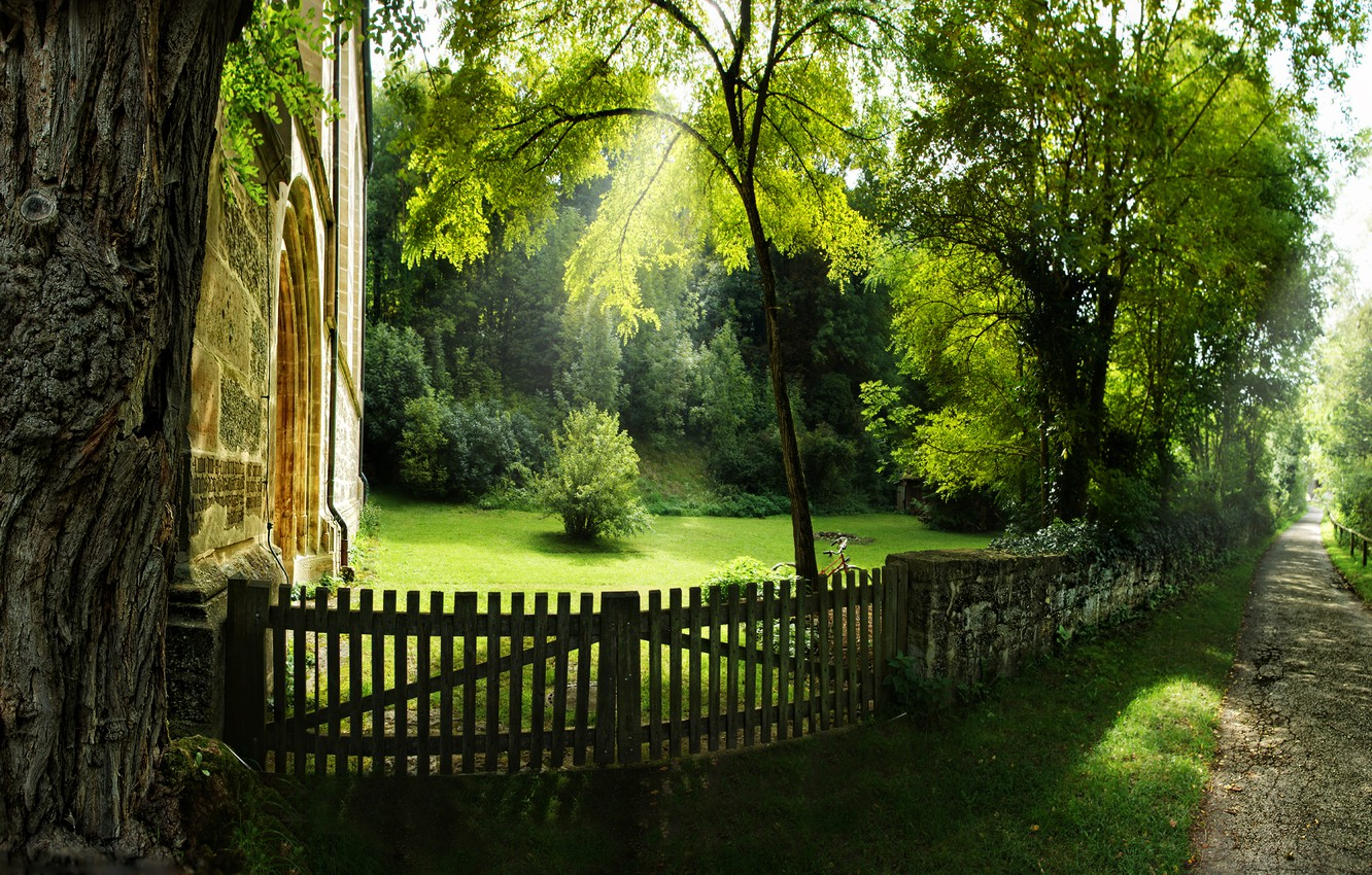 Photo wallpaper summer, grass, rays, light, trees, nature, tree, home, track, spring, track, alley, path, fences, stories, …