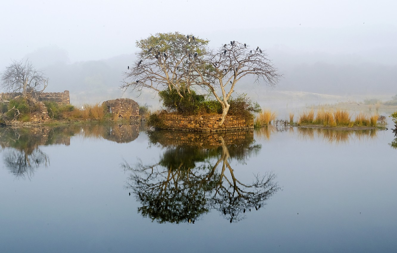 Photo wallpaper the sky, mountains, fog, lake, tree, the ruins, ruins