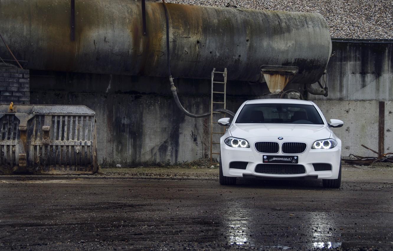 Photo wallpaper white, asphalt, wet, reflection, BMW, BMW, white, the front, f10