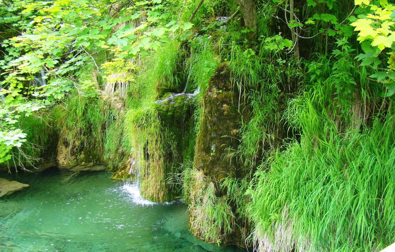 Photo wallpaper greens, water, lake, waterfall, transparent, pond, Croatia, national Park, clean, Plitvice lakes