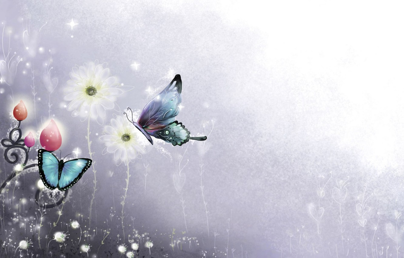 Photo wallpaper Flowers, Color, Minimalism, Butterfly, Background, Blue