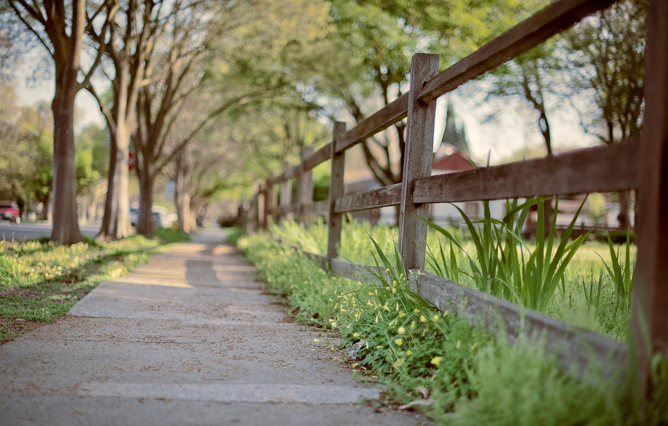 Photo wallpaper greens, grass, macro, trees, the city, background, widescreen, Wallpaper, street, the fence, gate, the fence, …