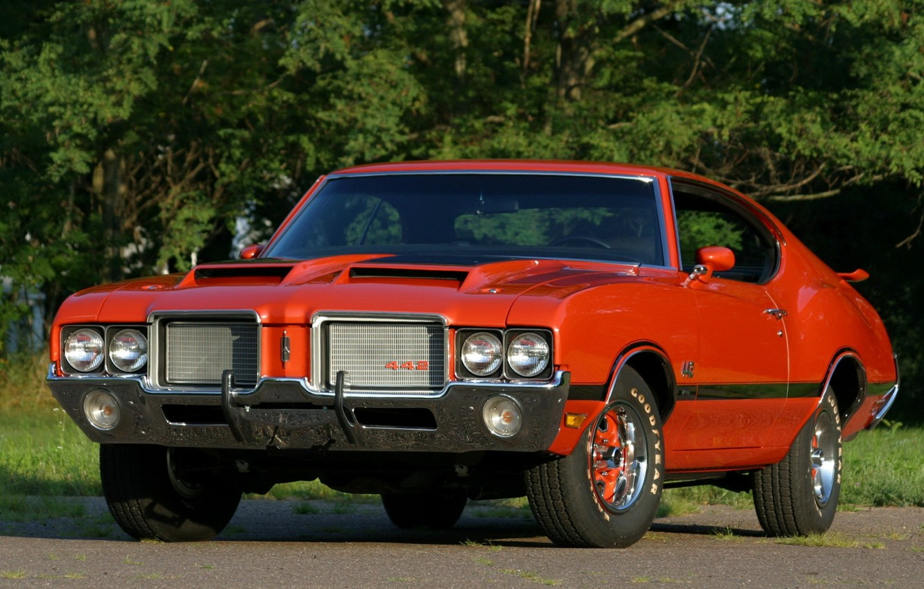 Photo wallpaper trees, orange, background, coupe, Coupe, the front, Muscle car, 1972, Hardtop, Muscle car, 442, Oldsmobile, …