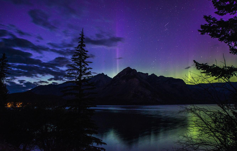 Photo wallpaper forest, night, lake, mountain, Northern lights, Banff National Park, Alberta, Canada, night, beautiful