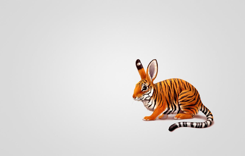 Photo wallpaper tiger, animal, hare, minimalism, rabbit, painting, tailed
