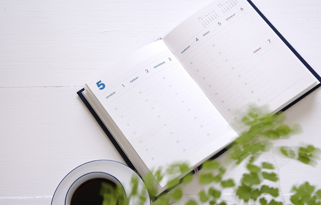 Photo wallpaper plant, coffee, Cup, Notepad, diary