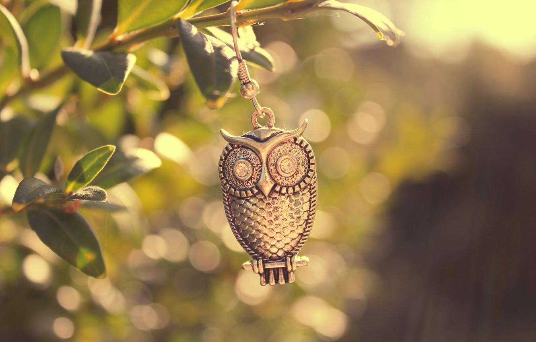 Photo wallpaper leaves, macro, light, metal, owl, bird, branch
