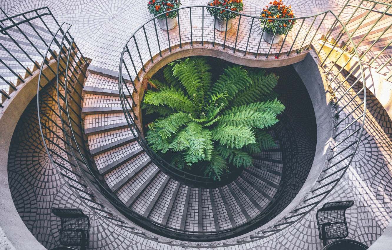 Photo wallpaper flower, ladder, hall